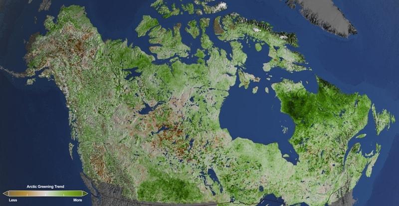 Влияние изменения климата Арктики