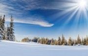 О погоде 12 - 16 февраля