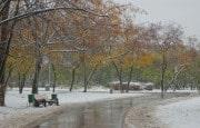 О погоде 15 - 19 октября