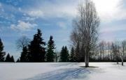 О погоде 18 - 22 марта