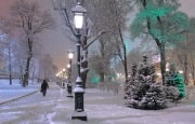 О погоде 25 февраля - 1 марта