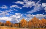 О погоде 30 сентября - 4 октября
