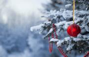 О погоде 31 декабря - 3 января