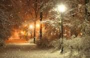 О погоде 4 - 8 декабря