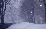 О погоде 5 - 9 февраля